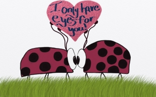 Lady Bugs ~ I Only Have Eyes For You