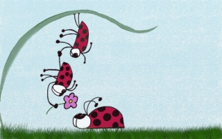 Lady Bugs ~ Professing his love