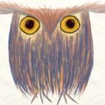 The Odd Owl