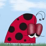 The Euphoric Ladybug