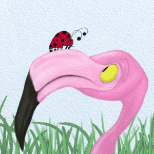 Fiona the flamingo is very curious to know what creature sits atop of her beak. They stare at each other in wonder. Wildlife Series #6.