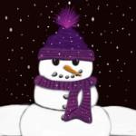 The Armless Snowman