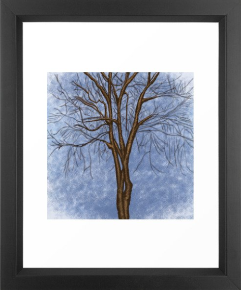 The Twisted Tree Framed Print